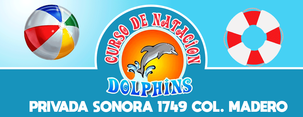 dolphins-web